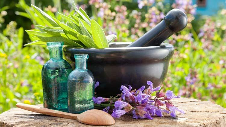 herbal-medicine-1